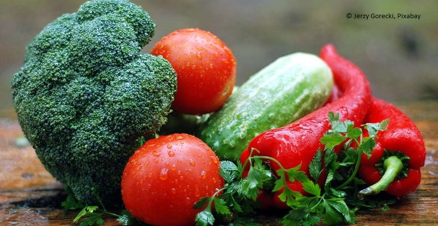 Vegan essen und studieren