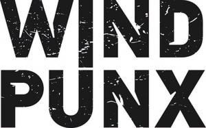 Logo windpunx GmbH & Co. KG