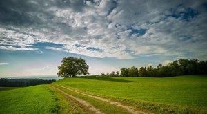 Nachhaltige Karriere: KlimaInvest stellt sich vor