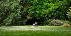 GaLaBau: Karrieremöglichkeiten im Garten- und Landschaftsbau
