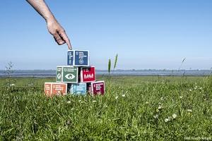 Wie sustaineration die nachhaltige Entwicklung von Unternehmen begleitet
